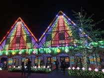 冬の季節は東京ドイツ村へ!関東3大イルミネーションの1つです。多くのお客様で賑わいます。