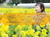 【期間限定】花いっぱいの房総へようこそ!