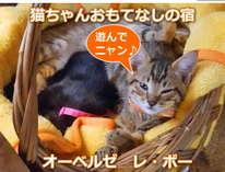 http://www.jalan.net/jalan/images/pictM/Y0/Y375550/Y375550151.jpg
