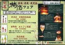 【2月限定飲み比べセレクトプラン】夕食に栃木の銘酒飲み比べ or 梅酒セット付