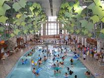 大型屋内温水プール夏季のみ営業