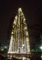 ホテルから2~3分の所の繁華街の中の公園にあるクリスマスツリーです。