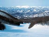 敷地内にある「たかつえスキー場」様々なコースをご用意しています!