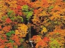 日本の秘境100選の1つ、秋山郷の【蛇淵の滝】