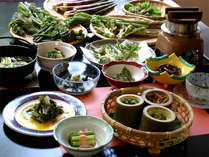 【山菜料理一例】生命力あふれる天然素材を巧みに使った山の滋味を堪能しよう!