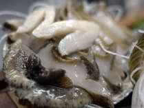 新鮮!あわびのお造り。海女の女将が獲ってきた新鮮魚介を使ったお料理。4名様以上でお造りが舟盛りに!