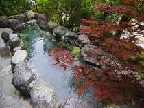 奥吉野・十津川の格安ホテル 湯泉地温泉 十津川荘