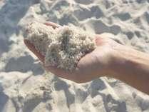 【白良浜】白い砂浜で有名な白良浜 青い海と白い砂浜は絶景です。