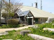 香楠荘の玄関には春がいっぱい