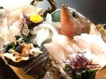 幻の魚『あこう』を活け造りに。都市部では滅多に食べられません!