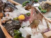 幻の魚『あこう』や高級魚『おこぜ』など、瀬戸内ならではのお魚を活け造りに♪ピクピク動く姿に驚きが◎
