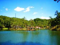 *【周辺】豊かな自然が広がり、四季折々、湖畔を彩ります。