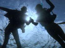 ダイビングご予約承ります!初心者の方も大歓迎!八丈島の海を満喫して下さい。