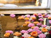 ■平日限定・一人旅■おひとり様で楽しむ温泉&天草グルメ(2食付10,260円)