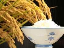 お米は自家製です