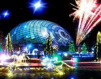 ☆世界最大級の夜間庭園と100万球のフラワーイルミネーション☆彡とっとり花回廊入場券付プラン☆彡