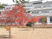 猪苗代湖畔の宿 志田浜温泉 レイクサイド磐光