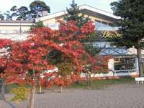 秋の志田浜から見た施設