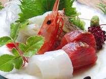 日本海の新鮮なお刺身をどうぞ♪