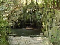 【毎月15日限定・みそぎ会体験】清めと癒しの滝行体験&新鮮な地物食材を使用した満腹夕食♪