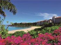 南の島の大自然に包まれた楽園で、特別なひとときを