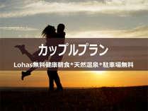 カップルプラン【150cm幅ワイドベット1台】スーパーホテル鹿嶋