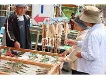 【くコ:彡イカボタンを探せ!】鼠ヶ関 イカの一夜干し作り体験と「庄内の夏を感じる 潮騒 夏の涼味膳」