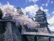 桜と高島城。桜とお城を見ていると不思議な気分になります