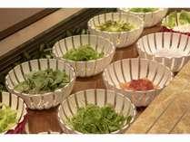 【朝食】サラダバー10種類のサラダをご用意致しております。