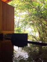 【貸切露天風呂オープン記念】絶景の家族露天風呂45分ご利用券付★特別セットプラン♪