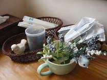 お風呂近くの洗面所にはくし、かみそり、シェービングクリーム、綿棒が常備