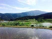 別宮の棚田から臨む氷ノ山