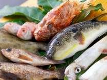 地元長門市仙崎港で仕入れる新鮮なお魚をメインにした料理をご準備しております!