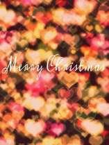 【★聖なる夜を★】ふたりきりのクリスマス~スパークリングワイン付き~(M)