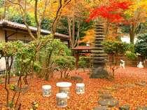 紅葉の時期には真っ赤な紅葉が一面に広がります。
