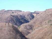 山側のお部屋からは雄大な山々~お部屋からの眺め