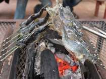 釣った岩魚はその場で塩焼きにしてもらえます。炭火でじっくりと。