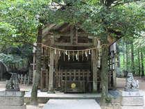 パワースポットへ!聖地「真名井神社」を目指す旅
