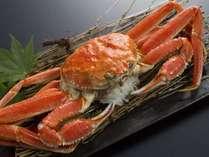 【追加料理】ずわい蟹(冷凍)1パイ5000円(税別)※要2日前予約
