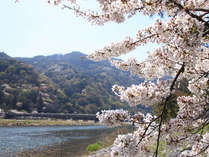 京都観光に便利!京都までJRで30分!