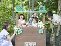 アンダの森は敷地内に遊べるアイテム・アクティビティがいっぱい!大きな木々の木陰で遊べる♪