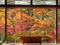 【景観】ロビーからの紅葉(11月上旬)