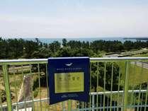 恋人の聖地サテライト「鯨の泳ぐ海が見える丘 展望台」