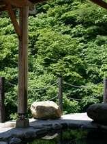 渓谷の新緑を望む露天風呂「かもしかの湯」/源泉かけ流しの天然温泉を自然の中で堪能♪