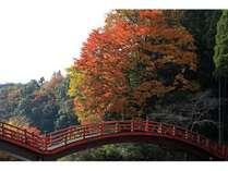秋は千葉で旅行はいかがですか?話題の小湊鉄道で養老渓谷へ♪