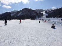 ★スノーシューでお散歩体験プラン★ 雪野原でワンダーランドビューを楽しもう♪【旬魚・食通プラン】