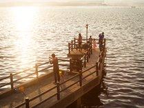 多田屋館内桟橋にて海釣りをお楽しみいただけます(おきあみ付き釣り竿1セット1,200円税別)