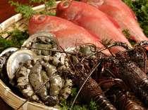 *その日に水揚げされた魚介類が食材だから、毎日違った食材のお料理をおつくり致します。