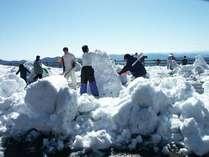 『南国土佐にも雪が降るって知っちゅうがぁ?』★冬遊びエンジョイプラン♪特典付