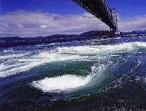 世界一のうずしお&日本一のあわじ島バーガープラン (淡路島をいっぱい楽しめる特典多数)